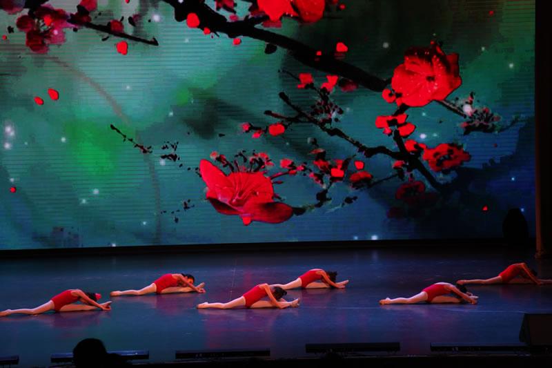 中国舞蹈班招生啦